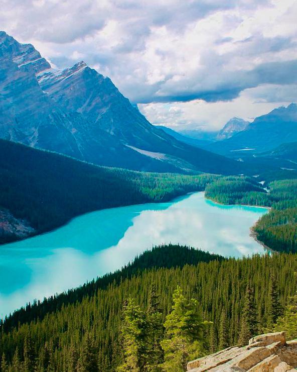 Lac Peyto, Parc National de Banff, Alberta, Canada