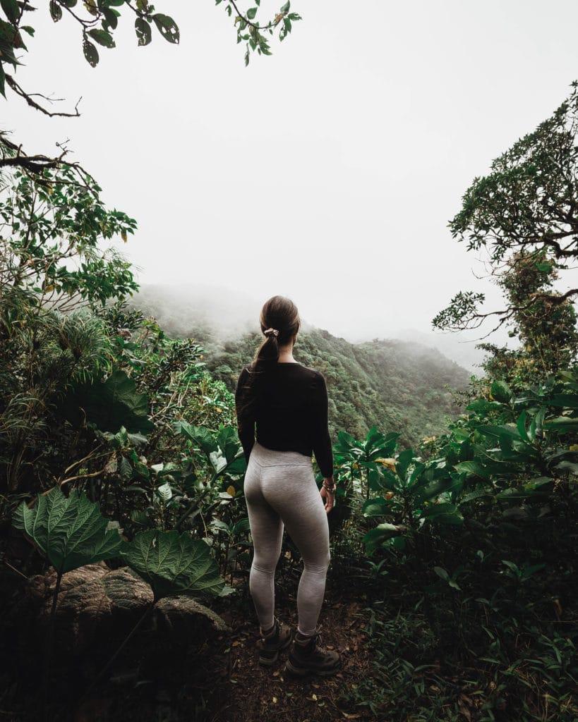 Savia_Costa_Rica_Monteverde_insolite_original