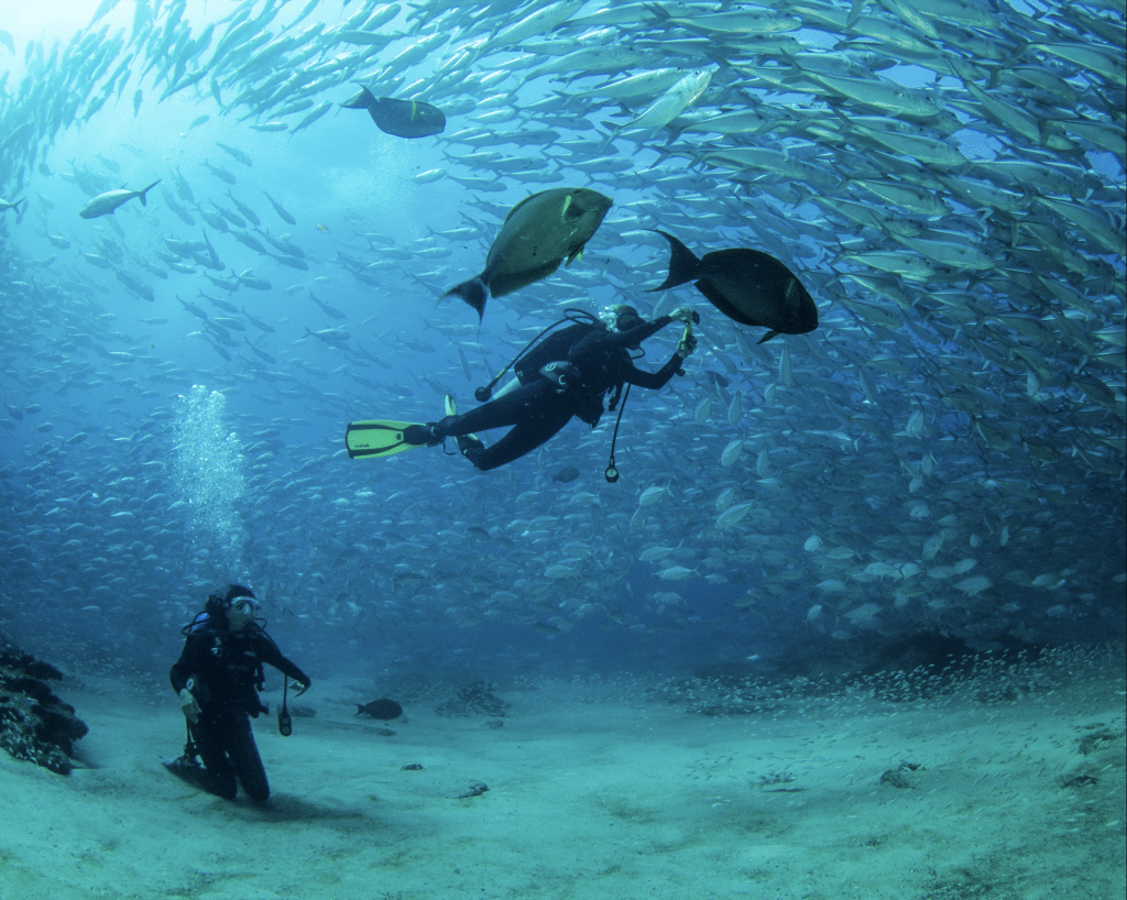snorkeling-plongee-Uvita-Costa-Rica