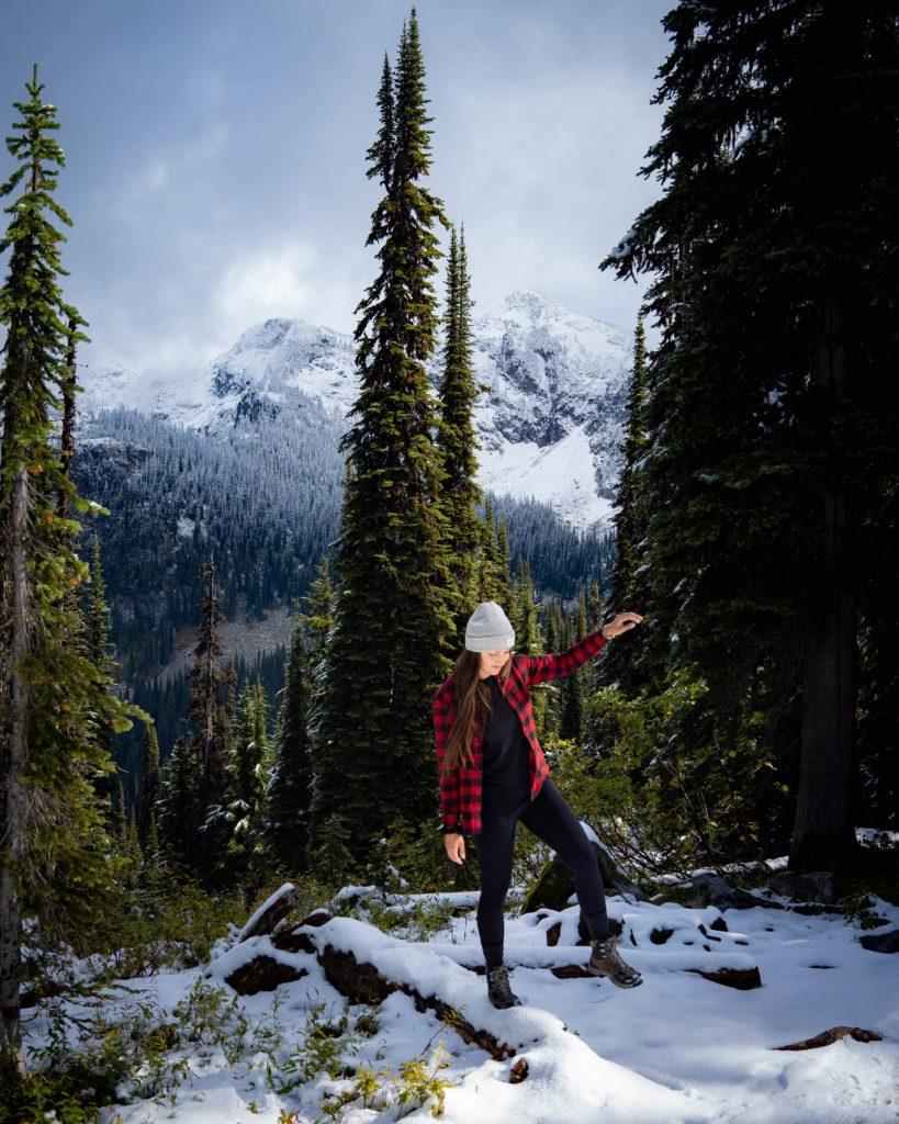 Rocheuses-Canadiennes-mont-Revelstoke-parc-national-Colombie-Britannique