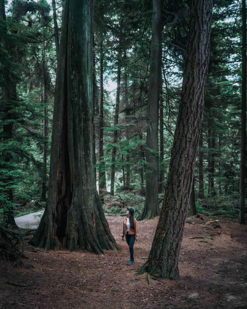 Stanley-park-Vancouver-Colombie-Britannique